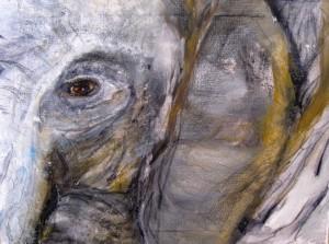 Elephant-bearbeitet