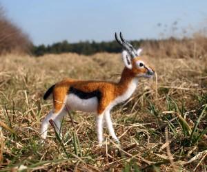 Gazelle3